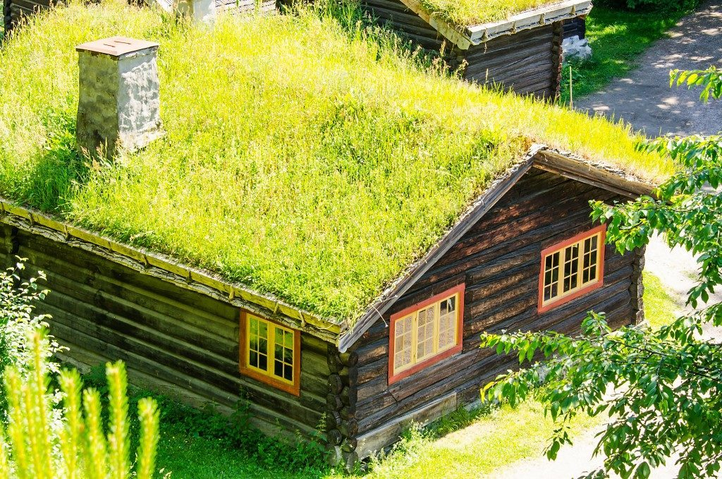 Country home with grass roof