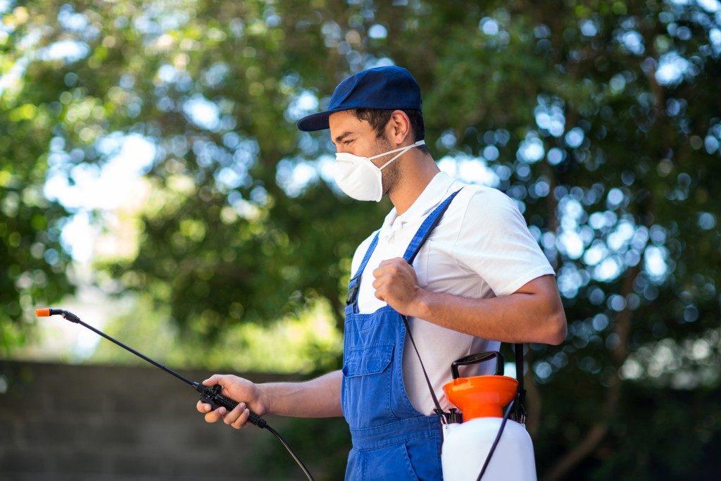 pest control spraying pesticides