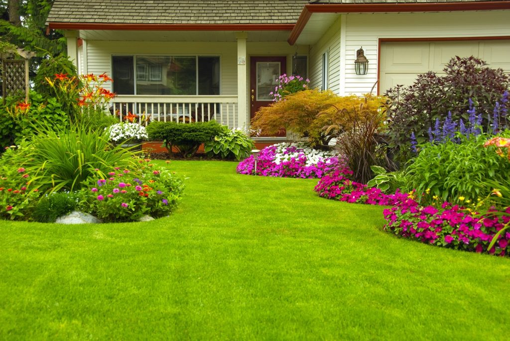 Manicured lawn of house