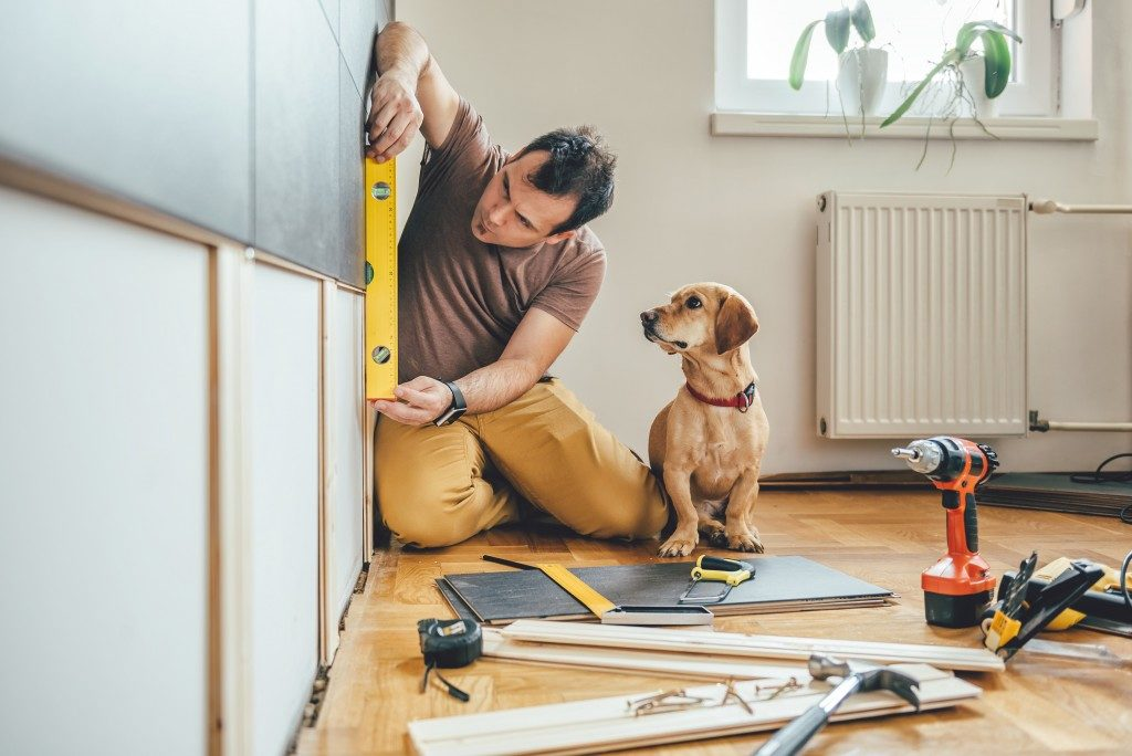 man renovating a house with a dog beside him